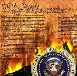 burning-constitution2